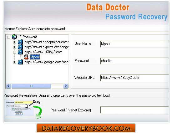 IE Password Unmask Program